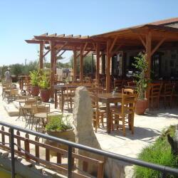 Oleastro Olive Park