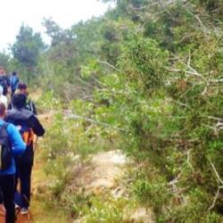 Adventure Mountain Park Trekking