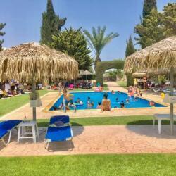 Camel Park Mazotos Pool